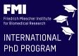 FMI PhD